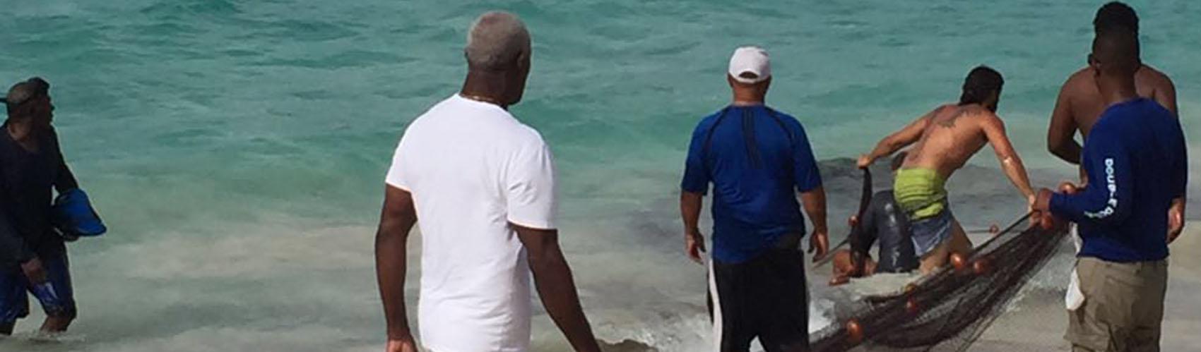 See Local Fisherman near St Marten Hotels